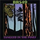 Buy Tangled in the Pines CD