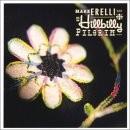 Buy Hillbilly Pilgrim CD