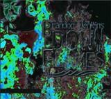 Buy Down in Flames CD