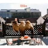 Buy Wilco ( The Album ) CD